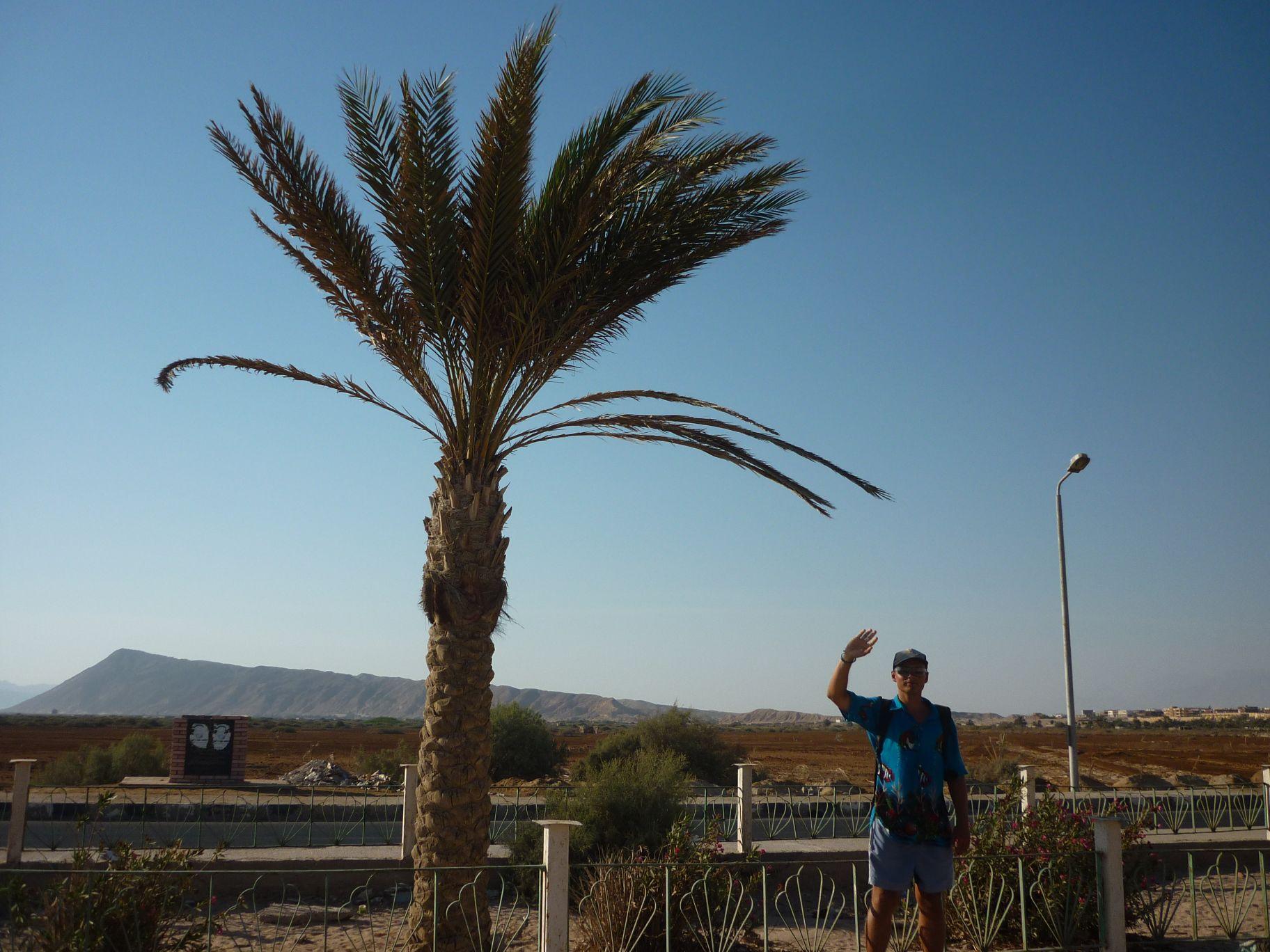 Dahab - El Tur - zdjęcia, atrakcje