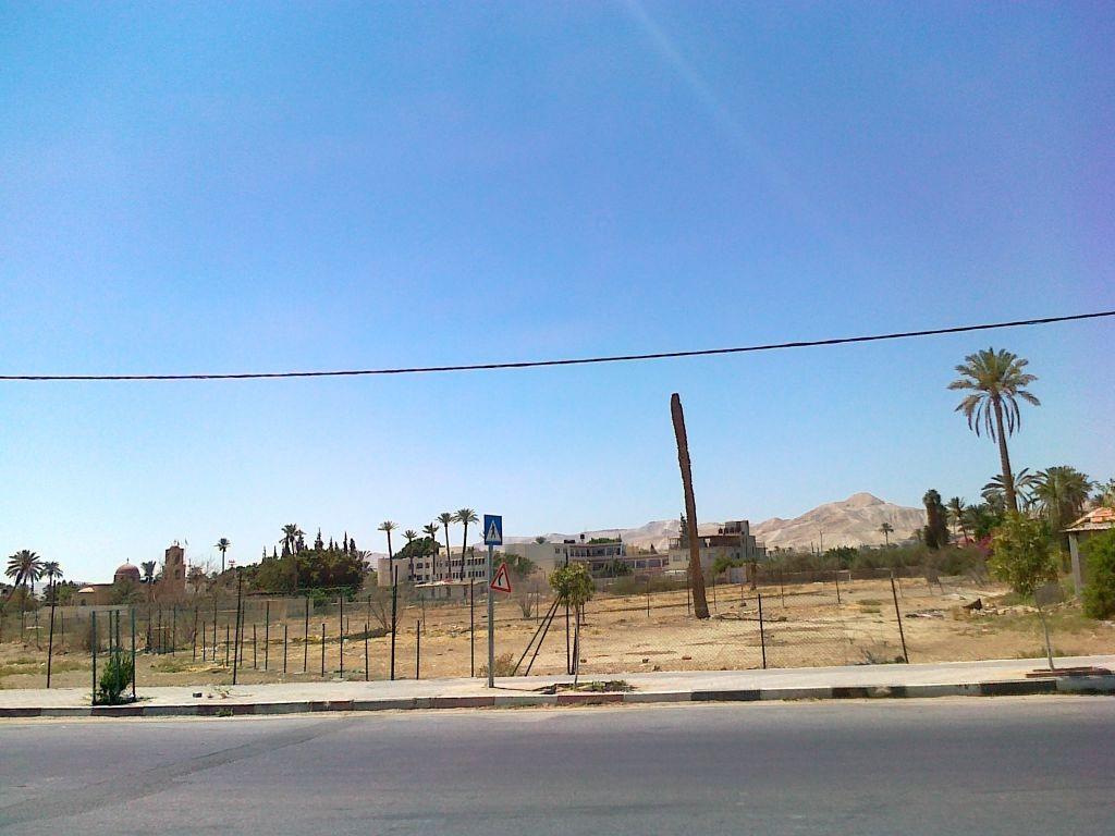 Izrael - Jerycho Sykomora Zacheusza - zdjęcia, atrakcje