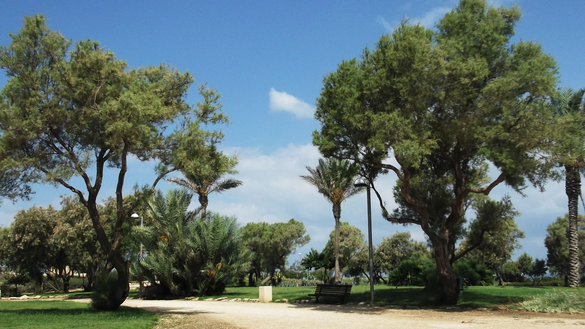 Izrael - Tel Aviv - zdjęcia, atrakcje