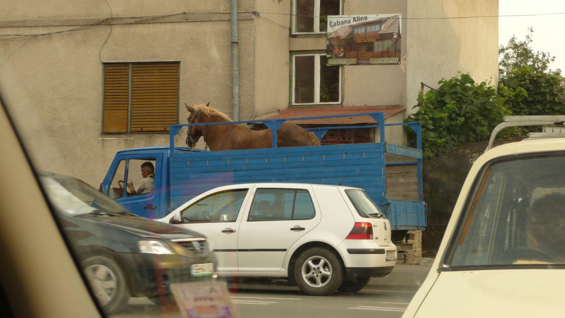 Rumunia - Sybin - zdjęcia, atrakcje